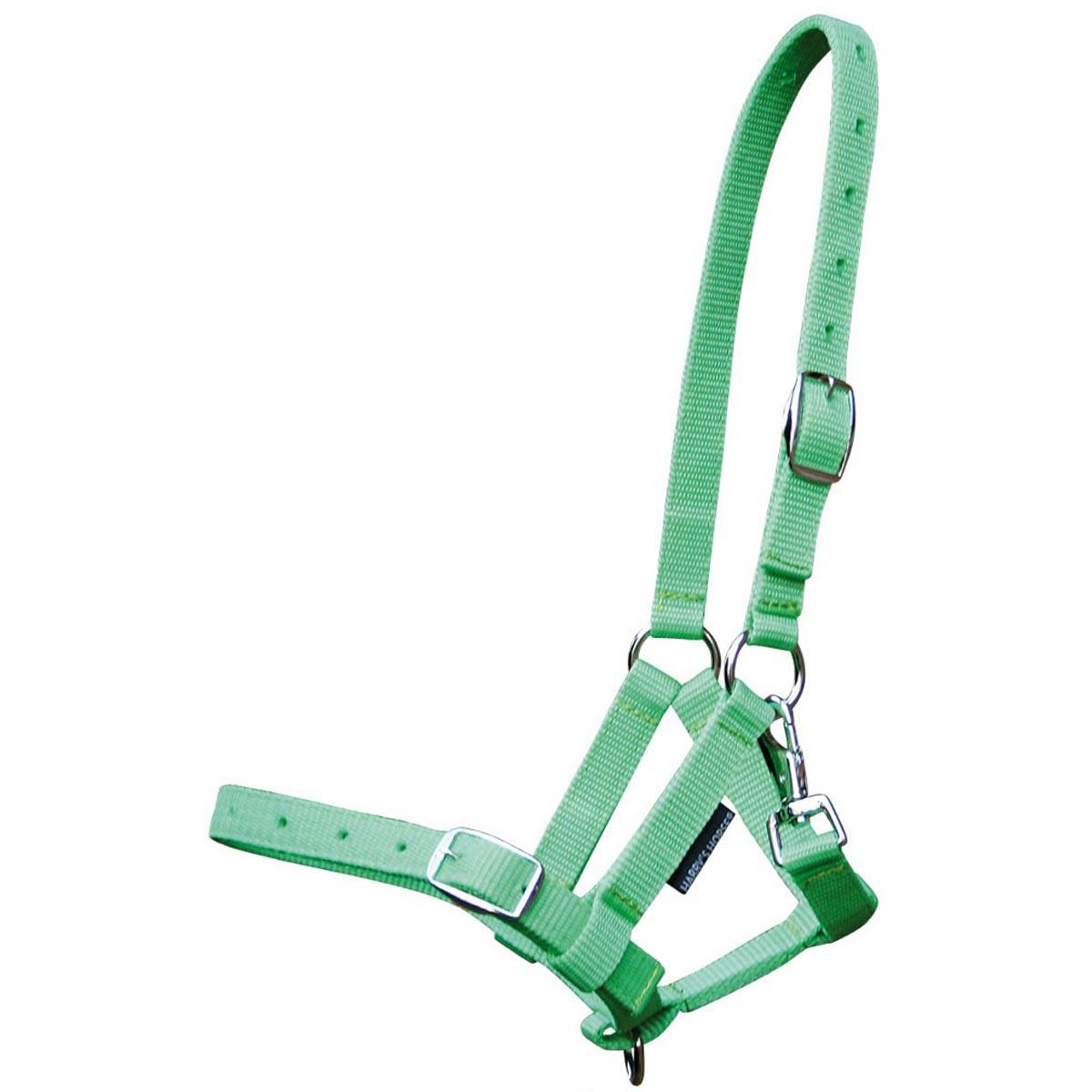 Harrys Horse halster veulen 41045 groen maat:veulen