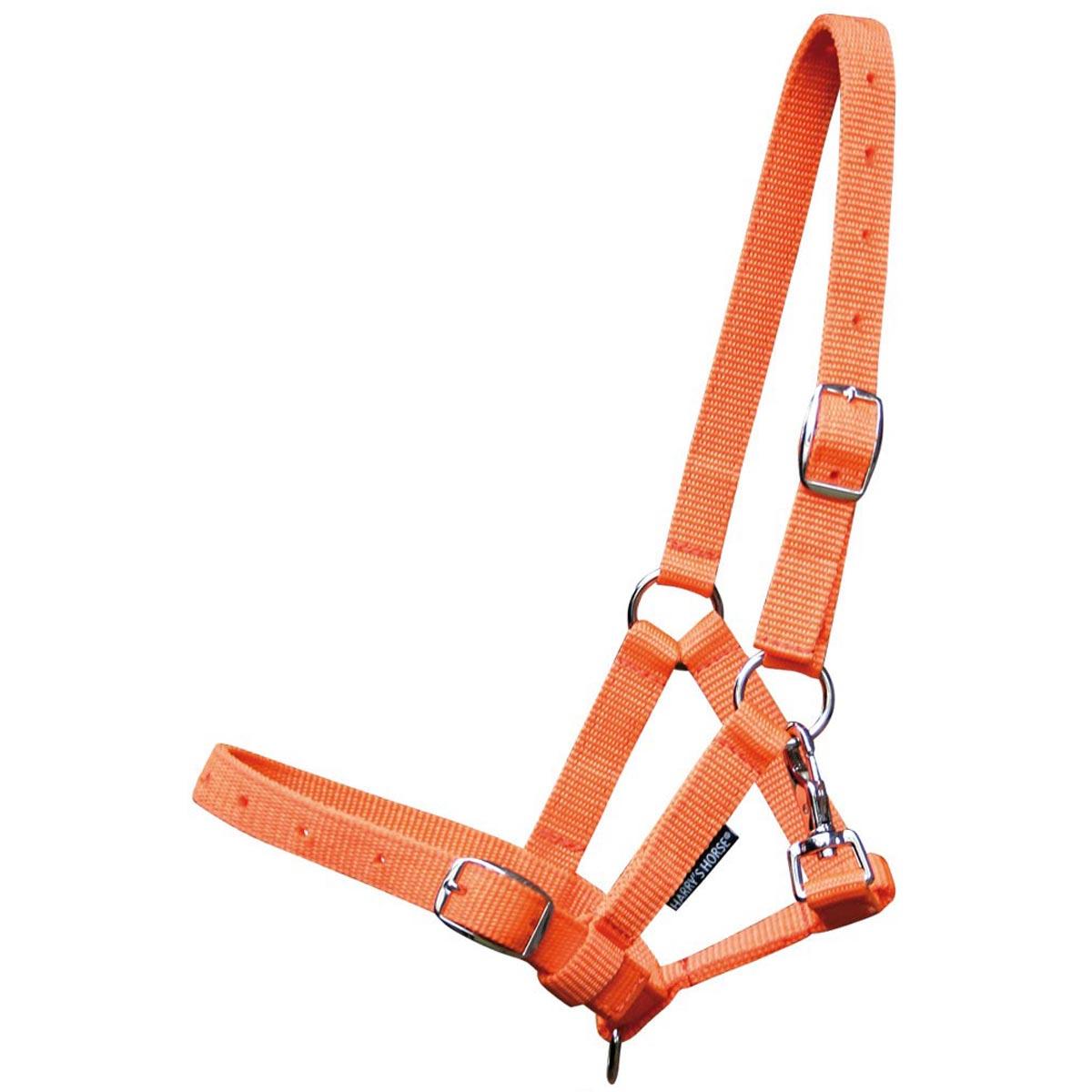 Harrys Horse halster veulen 41045 oranje maat:veulen