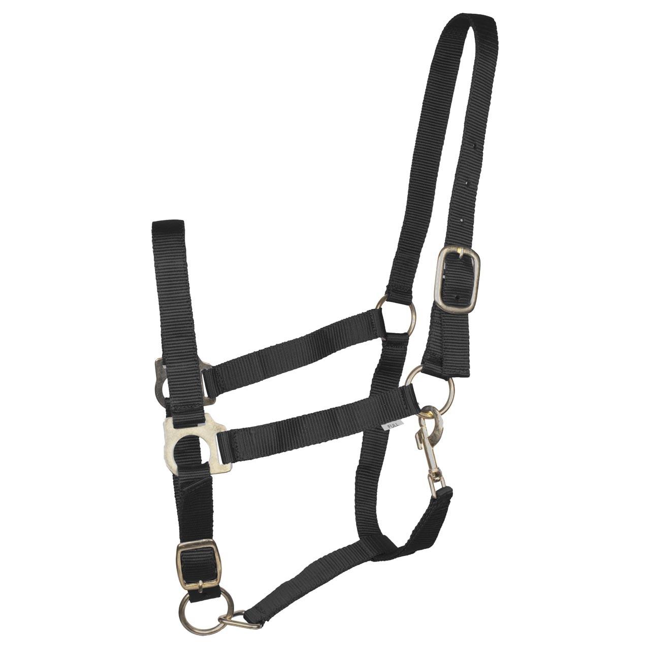 Budget Rider Basic II halster zwart maat:pony
