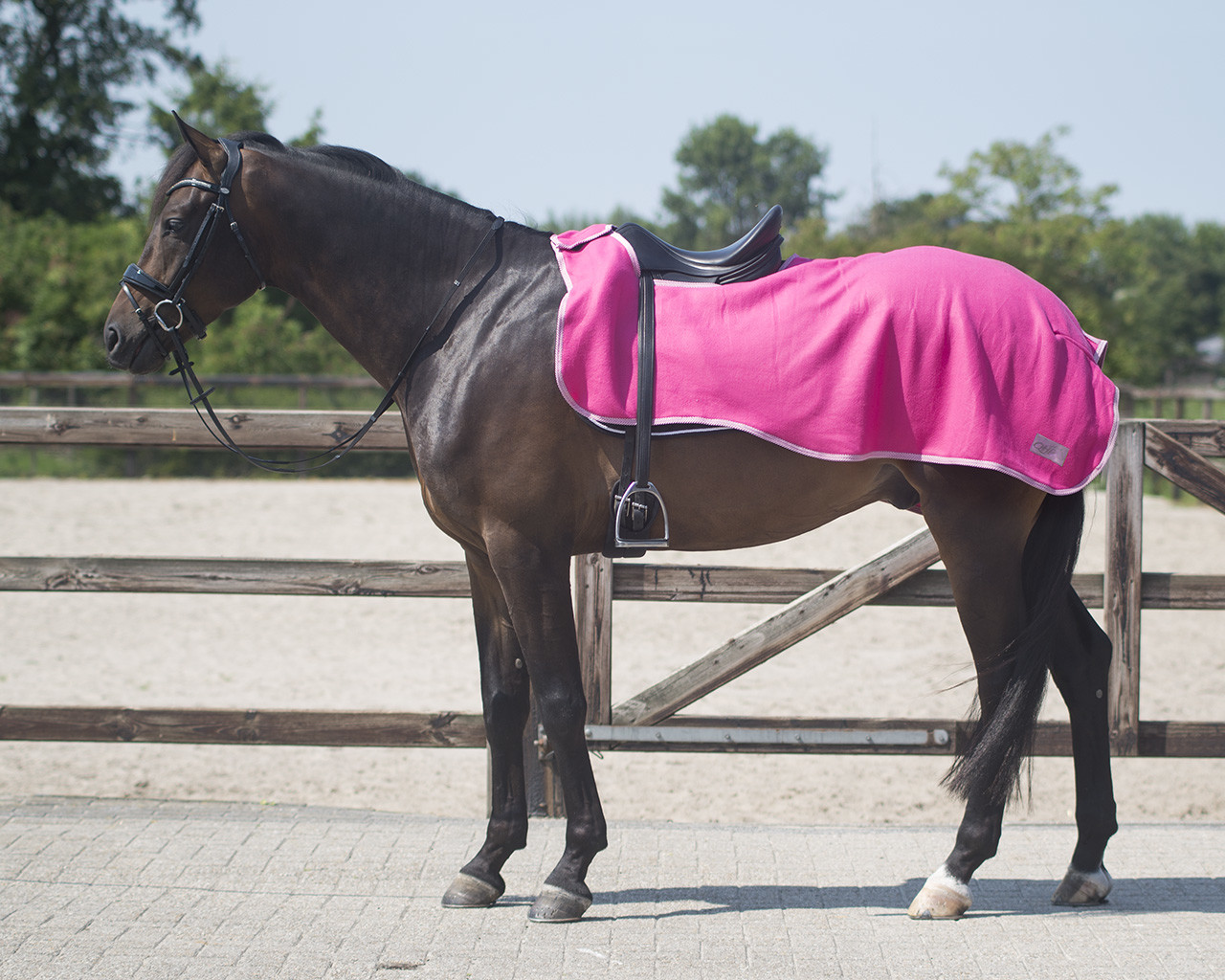 QHP fleece Color Uitrijdeken fuchsia maat:l