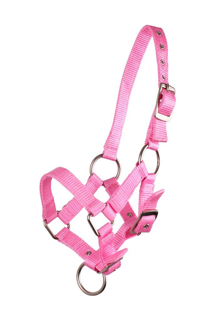 QHP veulen halster roze maat:3