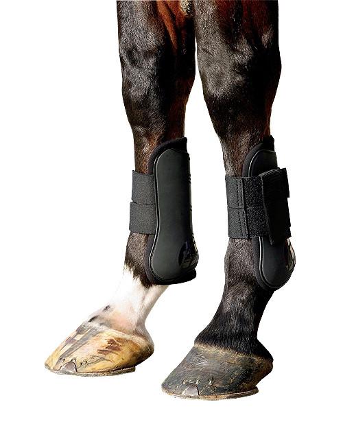 BR Pees- en kogelbeschermersset zwart maat:pony