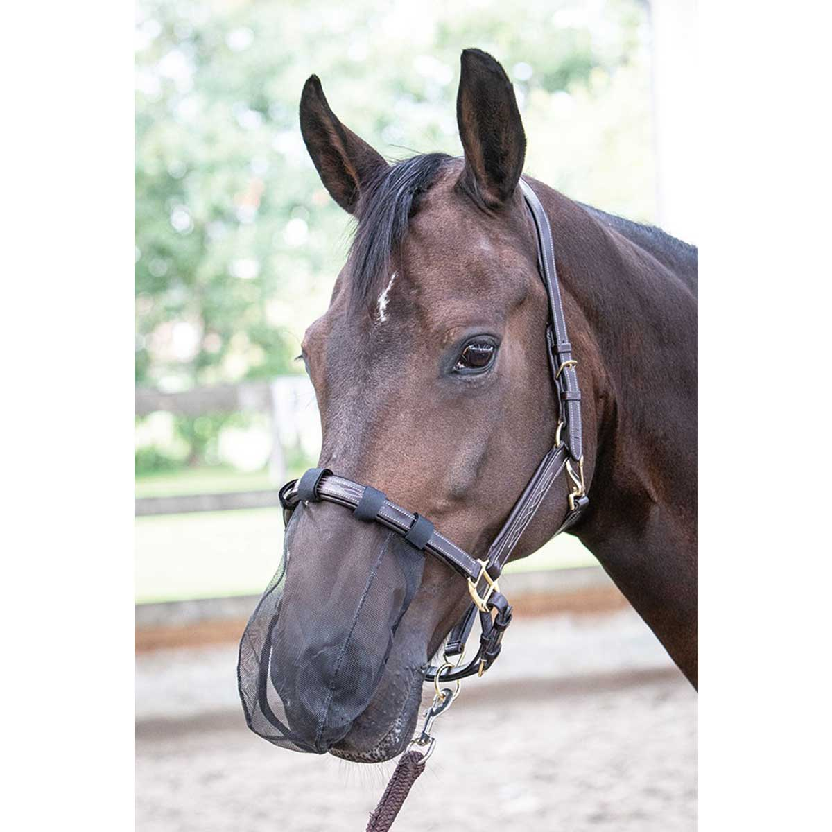 Harrys Horse Neusnet zwart