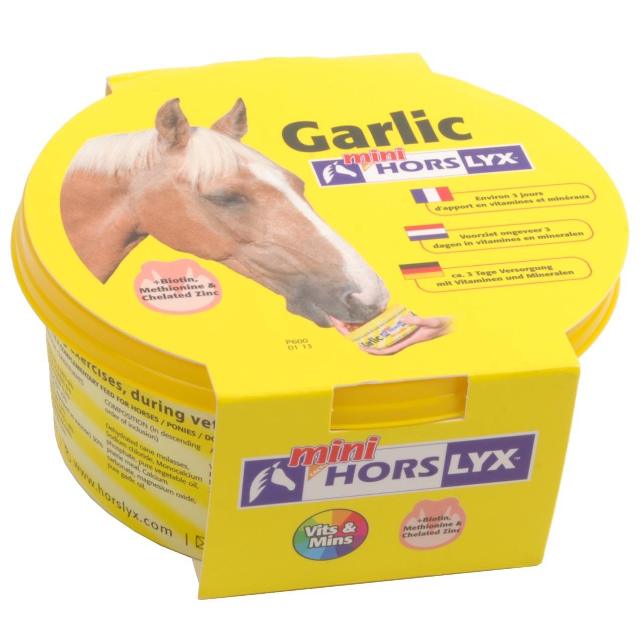 Horslyx Mini Garlic