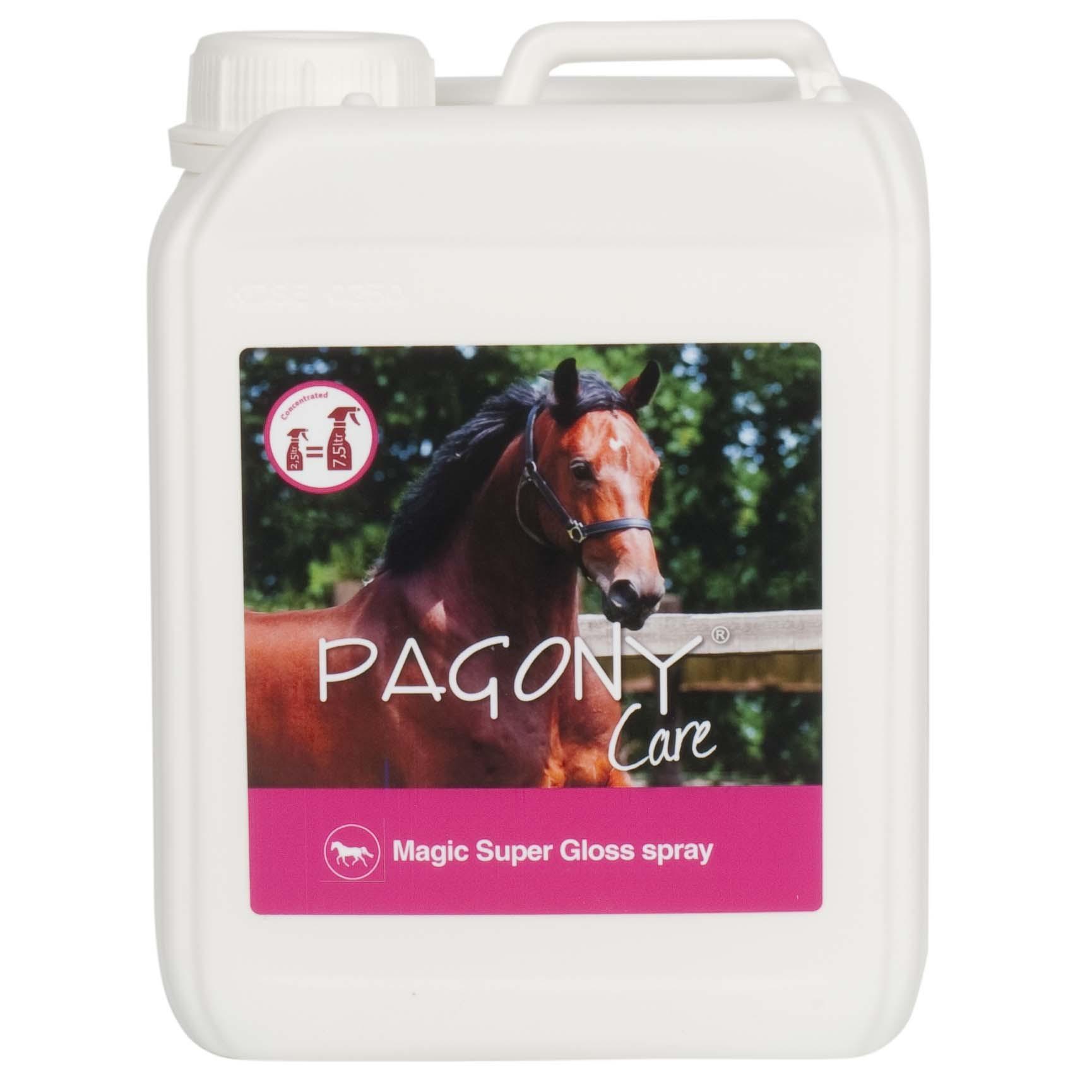 Pagony Magic Super Gloss Spray 61174