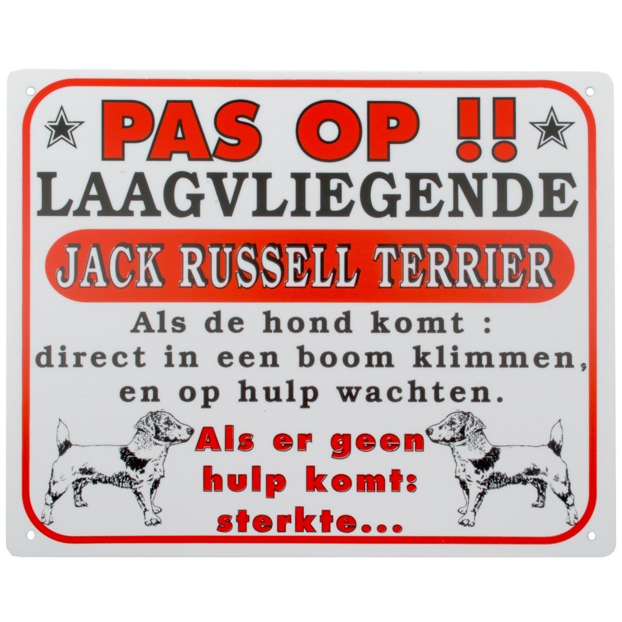 Bord: laagvliegende Jack Russell