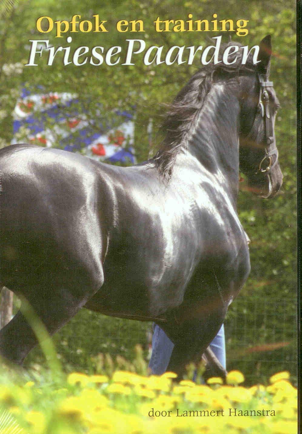 DVD: Opfok en training friese paarden