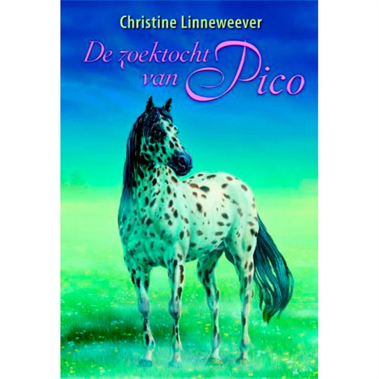 De zoektocht van Pico Nederlands boek