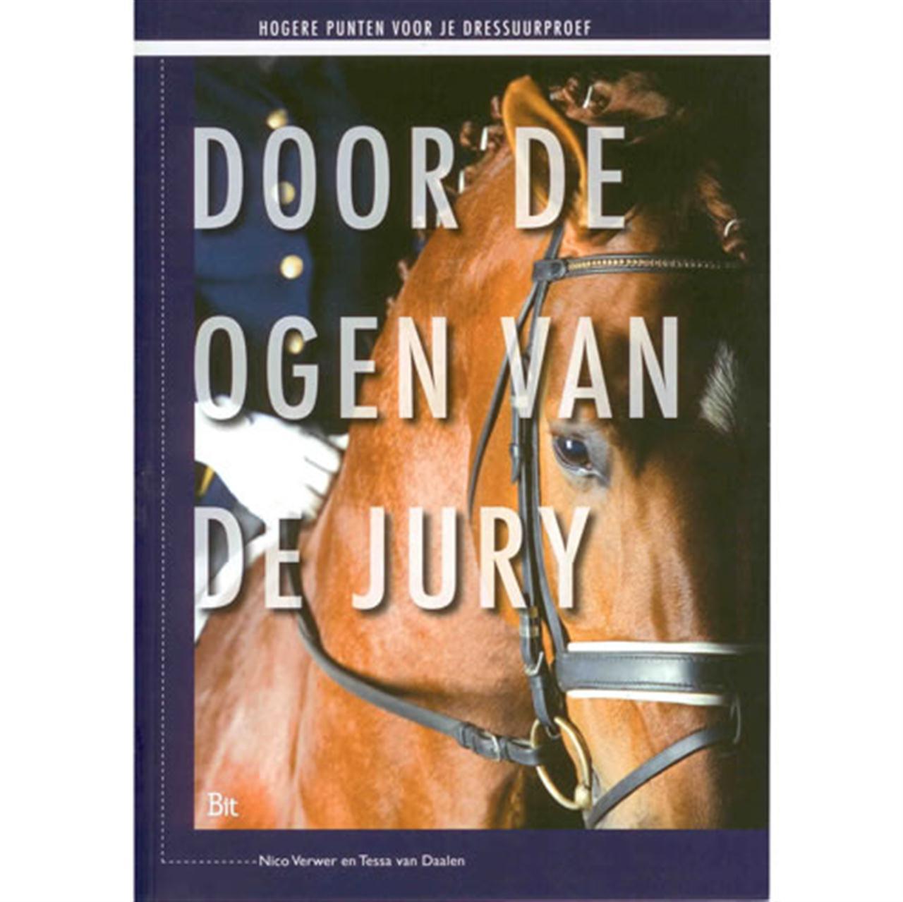 Door de ogen van de jury