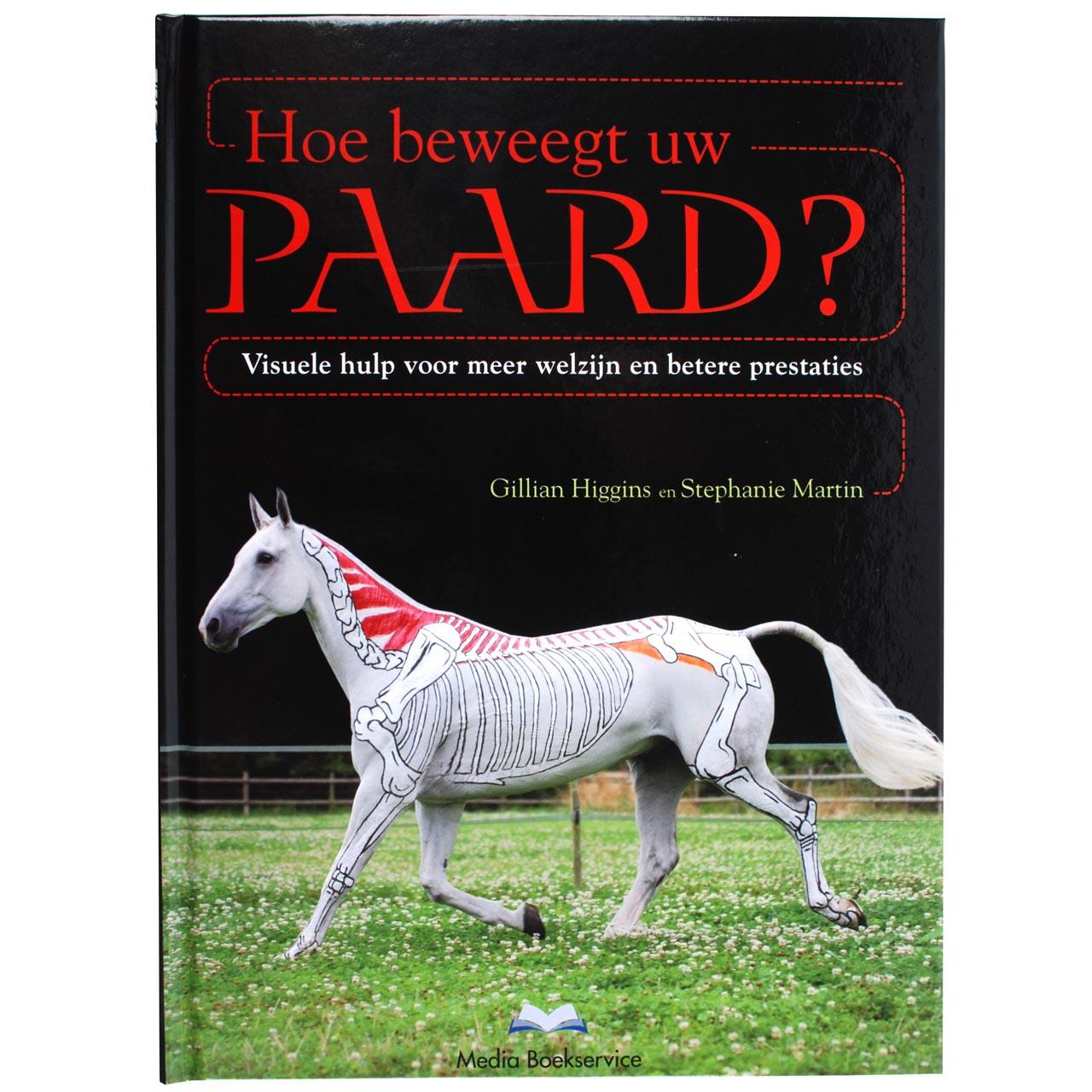 Hoe beweegt uw paard?