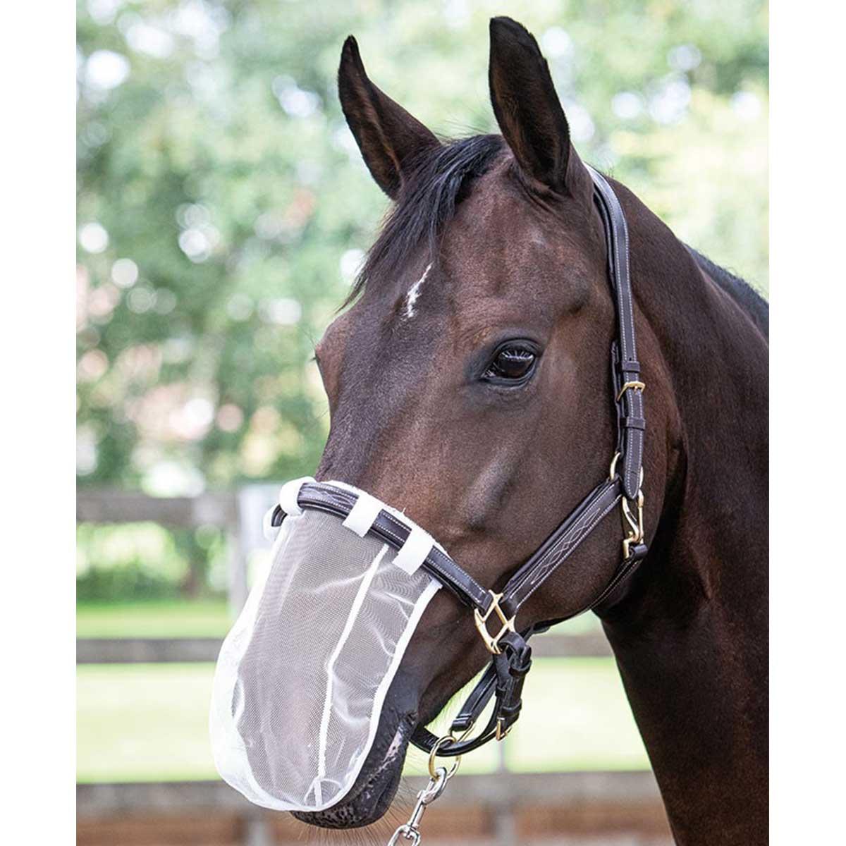 Harrys Horse neus/pollen net wit maat:pony