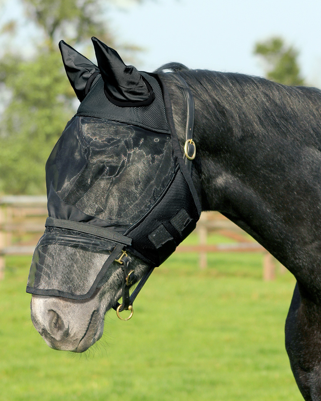 QHP Vliegenkap met afneembare neusflap zwart maat:pony