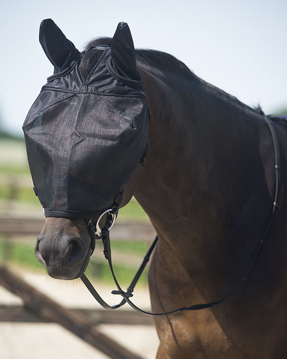 QHP Rij vliegenmasker met oren zwart maat:cob